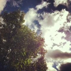 Blick zum Himmel