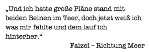 Zitat_Faizel